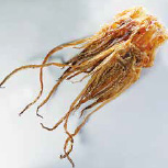 Dried squid legs
